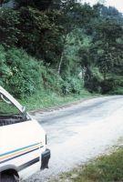 177_Darjeeling