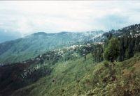 182_Darjeeling