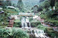 183_Darjeeling