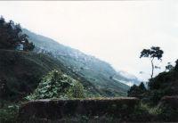 184_Darjeeling