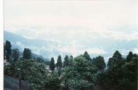 188_Darjeeling