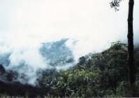 190_Darjeeling