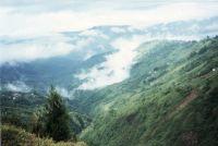 198_Darjeeling