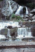 201_Darjeeling
