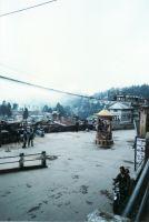 205_Darjeeling