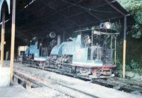 210_Darjeeling