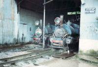 214_Darjeeling