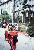 216_Darjeeling