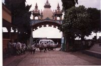 241_Mayapur