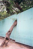 383_Mumbai