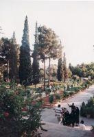 Iran_119