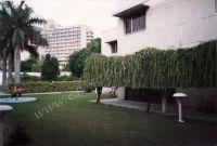 100_Delhi