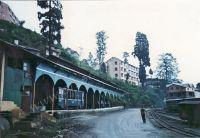 173_Darjeeling