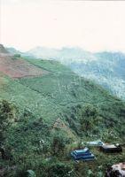 180_Darjeeling