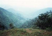 185_Darjeeling
