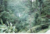 187_Darjeeling