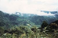 196_Darjeeling