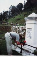 222_Darjeeling
