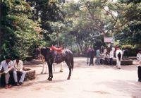 390_Mumbai