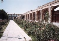 Iran_061